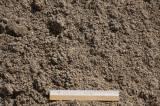 Песок крупно-зернистый мытый (ГОСТ 8736-93) 350 р. куб. м.