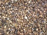 Предлагаем щебень, ГПС, отсев, гравий, песок с доставкой автотранспортом.